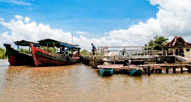 Pesona Keindahan Wisata Kampung Laut Cilacap Jawa Tengah Daftar Kab