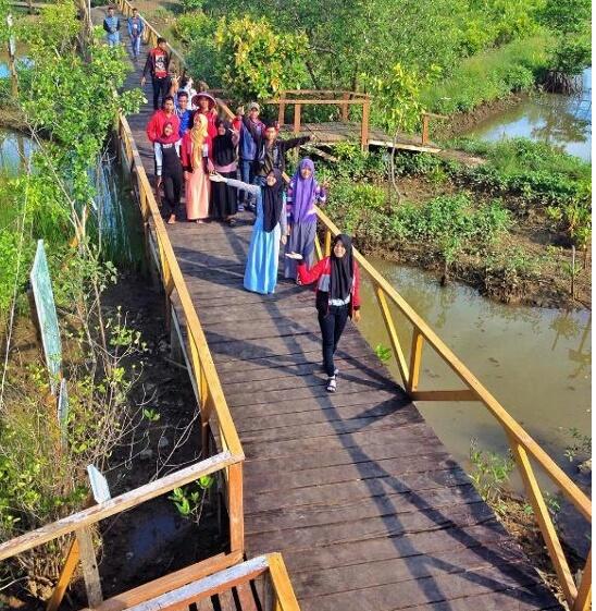 Wisata Kampung Laut Cilacap Wonderful Menuju Bisa Menaiki Kapal Lewat