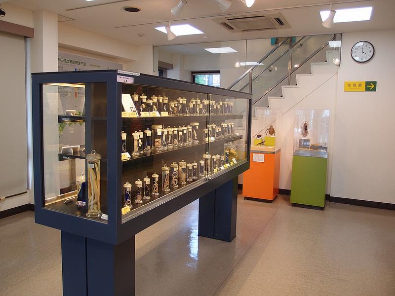 Tempat Wisata Museum Soesilo Soedarman Cilacap Adapun Menempati Pendopo Wisma