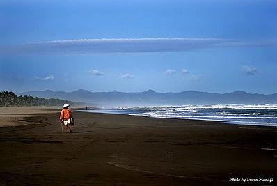 Pantai Widarapayung Wikipedia Bahasa Indonesia Ensiklopedia Bebas Ketapang Indah Kab
