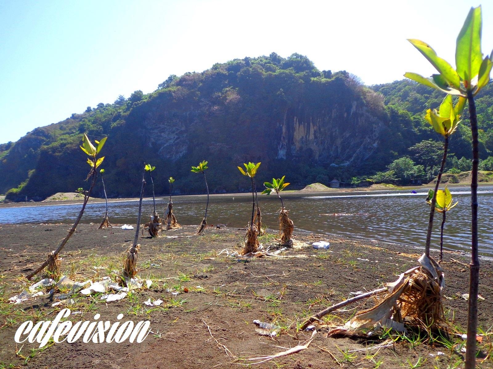 Double Trip Menjamahi Kemistisan Gunung Selok Pantai Sodong Tempat Wisata
