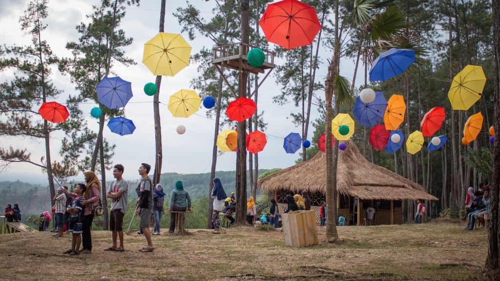 7 Obyek Wisata Cilacap Kunjungi Wisatawan Hutan Payau Mangrove Kab