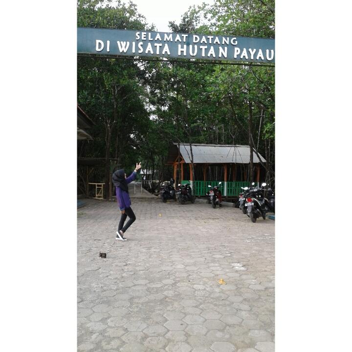 Hutan Payau Oleh Lutfi Laely Kompasiana Dokpri Wisata Mangrove Kab