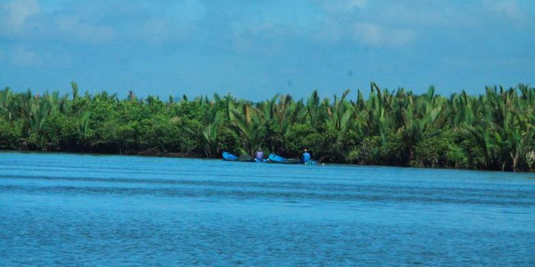 Menanam Mangrove Ekonomi Ekologi Kompas Perahu Warga Melintas Hamparan Hutan