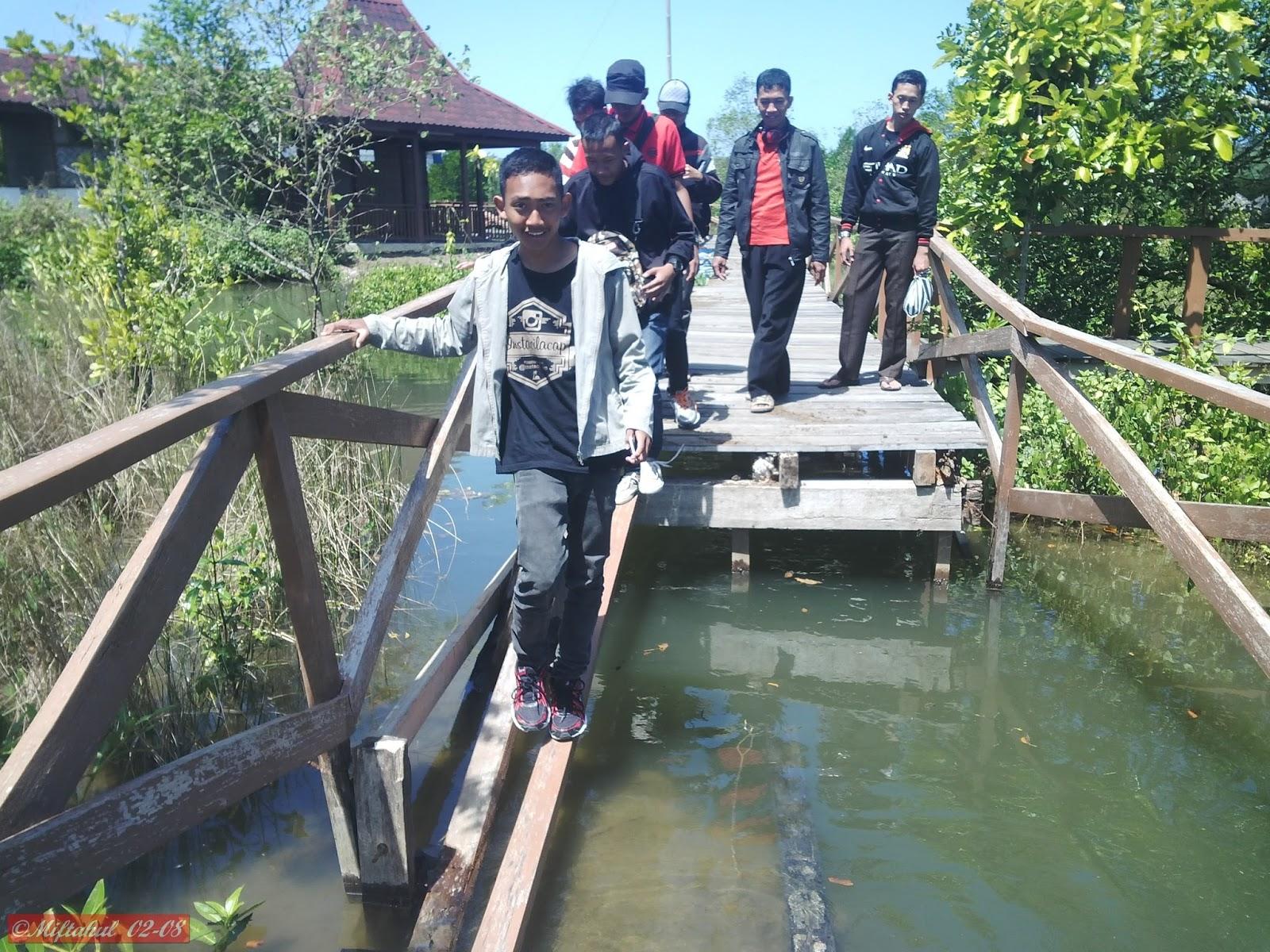 Wisata Cilacap Hutan Mangrove Kampung Laut Kayanya Udah Ngga Dirawat
