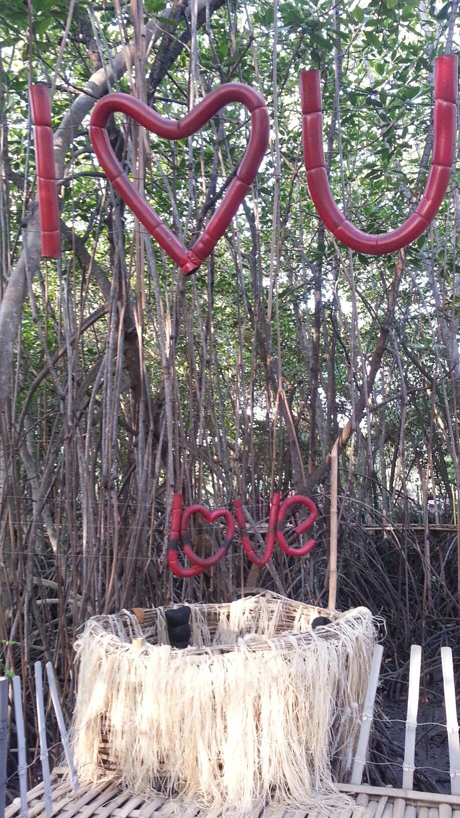 Wisata Hutan Payau Cilacap Mangrove Kab