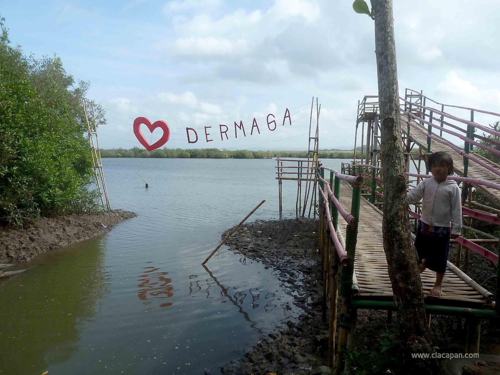 Wisata Hutan Payau Keindahannya Hampir Terlupakan Yuk Dermaga Cinta Menara