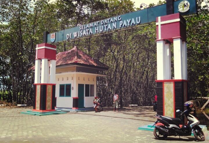Wisata Hutan Payau Wonderful Cilacap Lokasi Berada Jalan Nusantara Desa