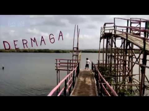 Yuk Kunjungi Wisata Hutan Payau Cilacap Youtube Mangrove Kab