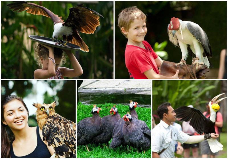 27 Tempat Wisata Anak Terasik Keluarga Bali Berdiri Lebih 20