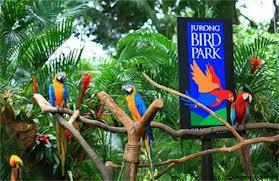 Bali Bird Park 1001wisata Kab Gianyar