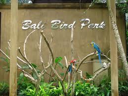 Bali Bird Park 1001wisata Salah Satu Destinasi Tour Murah Terletak