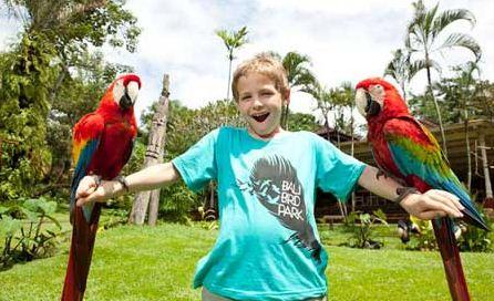 Gorgeous Places Vacation Bali Island Placestoread Bird Park Hidden Trip
