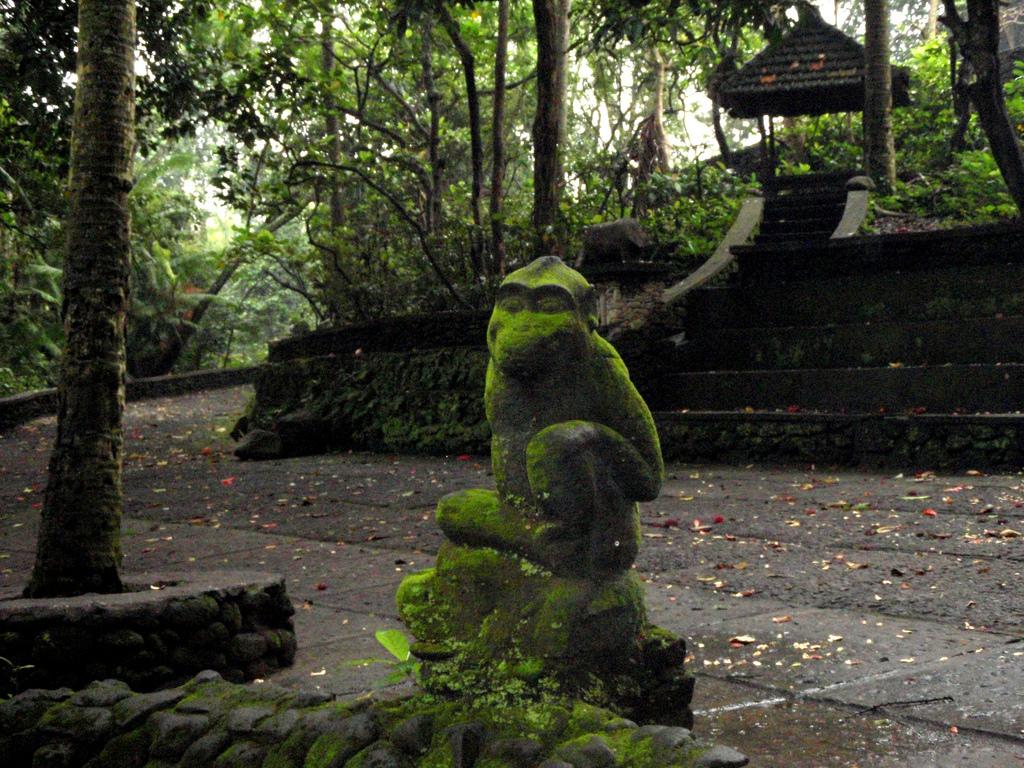 Sacred Monkey Forest Sanctuary Bali Attraction Copy Eric Pesik Bird