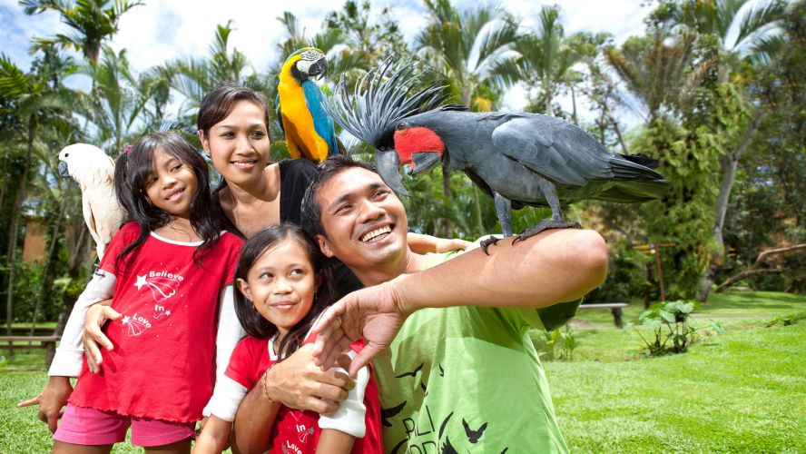 Surga Wisata Indonesia January 2016 Bali Bird Park Kab Gianyar