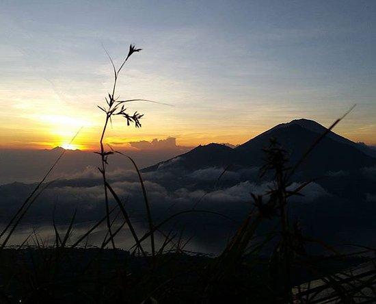 Top 10 Bali Krisna Tour Sukawati Tripadvisor Budinabali Day Tours