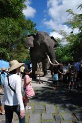 Pantai Masceti Coast Road Kusamba Wanderant Bali Safari Marine Park
