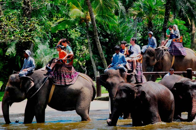 Travel 101 Top 13 Destinations Ubud Bali Indonesian Food Zoo