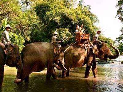 10 Gambar Bali Zoo Park Harga Tiket Masuk Kebun Binatang