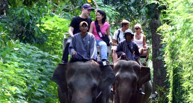 10 Tempat Wisata Gianyar Bali Menarik Terkenal Taro Elephant Safari