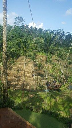 Alas Harum Agro Tourism Tegalalang 2018 Full View Elephant Safari