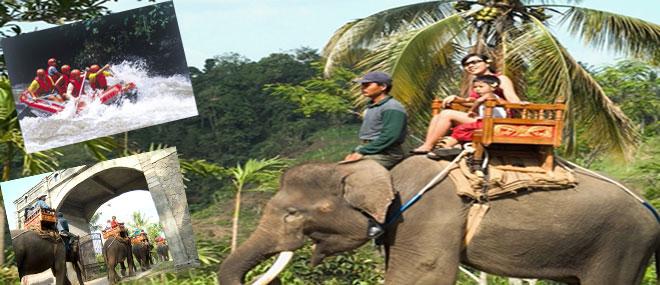 Bali Elephant Safari Ride Rafting Travel Guide Park Kab Gianyar