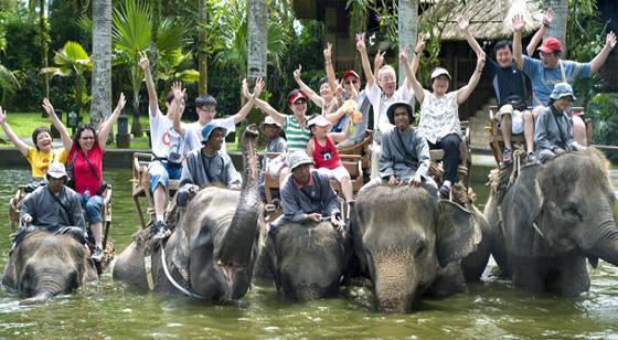 Bali Safari Marine Park Hal Menarik Informasi Wisatawan Berkunjung Menunggangi