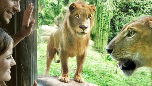 Bali Zoo Opened 2002 Island Balinese Owned Zoological Park Conceived