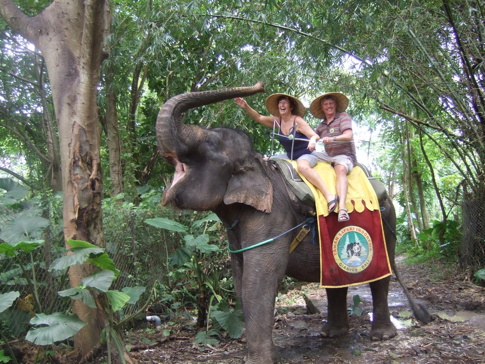 Elephant Ride Putu Bali Tour Guide 05 Safari Park Kab