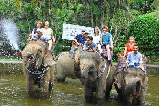 Fun Water Picture Elephant Safari Park Tegalalang Kab Gianyar