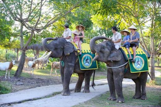 Naik Gajah Bali Safari Merine Park Elephant Kab Gianyar