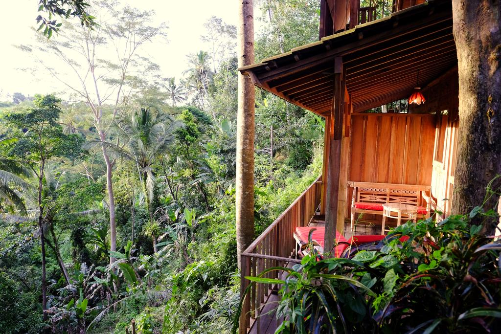 Prashanti Bali Ubud Indonesia Booking Gallery Image Property Elephant Safari