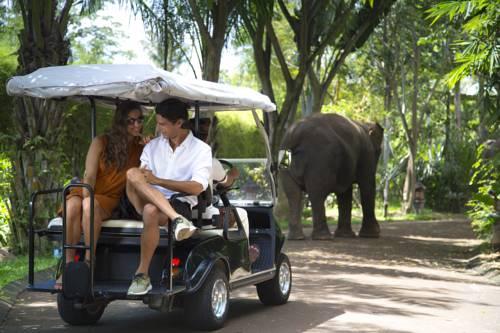 Seite 3 Hotels Saba Viamichelin Elephant Safari Park Kab Gianyar