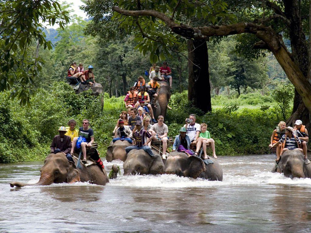 Uluwatu Tours Bali Driver Private Tour Ubud Elephant Safari Park
