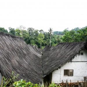 West Java Incsafari Park Similar Tourism Opportunities Elephant Safari Kab