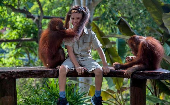 5 Pilihan Wisata Kebun Binatang Bali Blog Vokamo Zoo Berlokasi