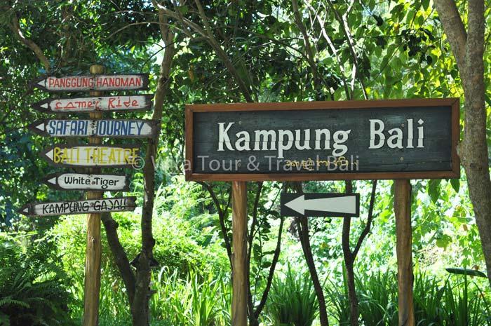 Bali Safari Marine Park Peta Lokasi Jam Buka Harga Tiket