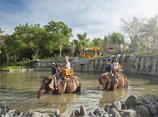 Bali Zoo Home Elephant Expedition Kebun Binatang Kab Gianyar