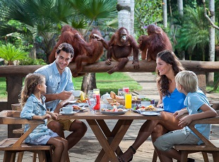 Bali Zoo Home Promotions Kebun Binatang Kab Gianyar