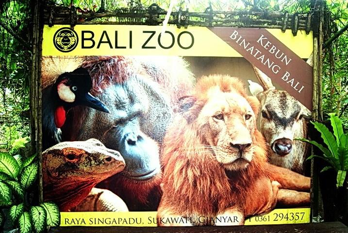 Harga Tiket Masuk Bali Zoo Park Kebun Binatang Voucher Kab