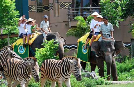Inilah Kebun Binatang Bali Wajib Dikunjungi Tempat Liburan Anak Populer