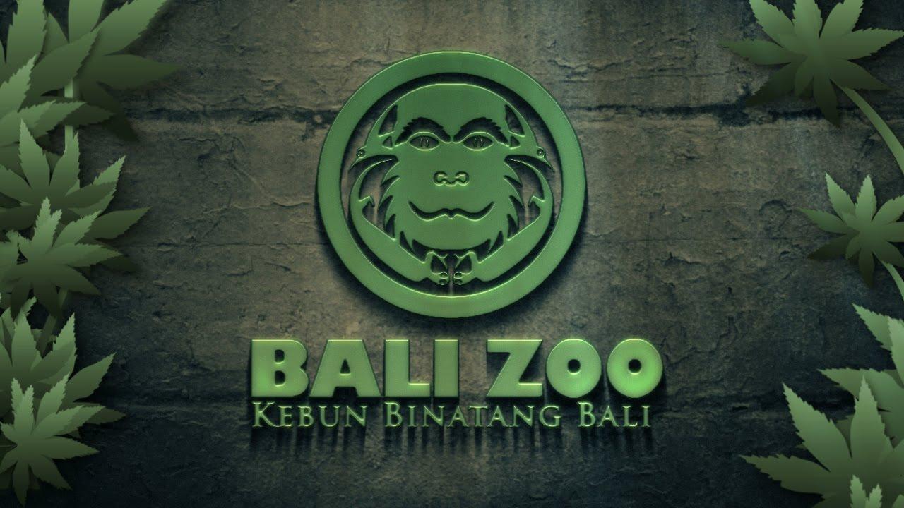 Kebun Binatang Bali Paket Tour Murah Zoo Park Activities Kab