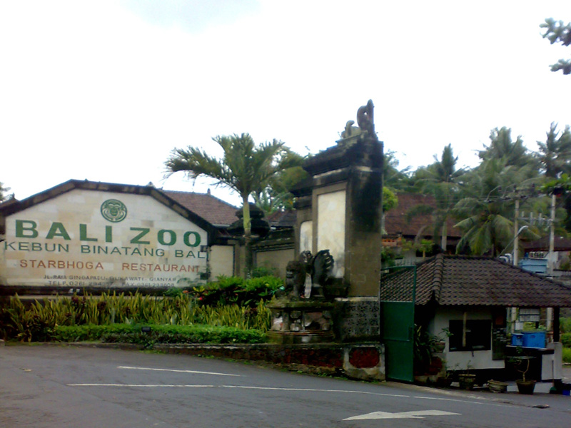 Kebun Binatang Bali Paket Tour Murah Zoo Park Tours Kab