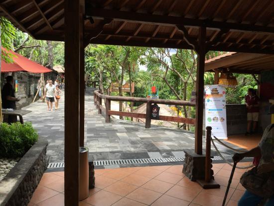 Kebun Binatang Bali Zoo Picture Sukawati Tripadvisor Kab Gianyar