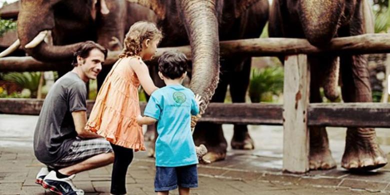 Kunjungan Wisatawan Bali Zoo Meningkat Tajam Kompas Kebun Binatang Kab
