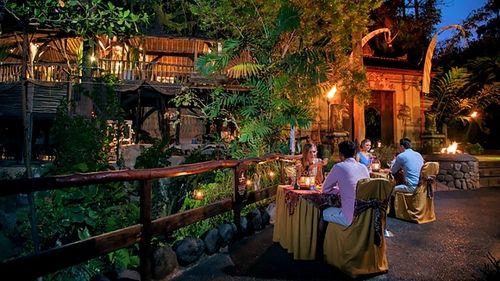 Night Bali Zoo Expedia Show Item 6 7 Couples Enjoying