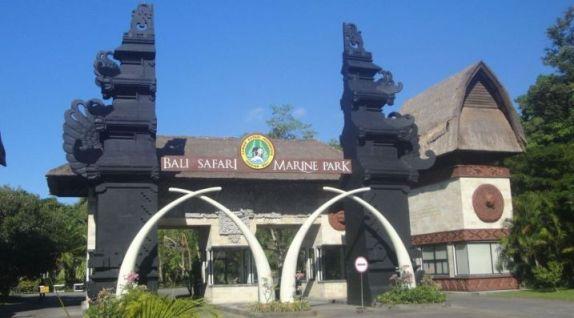 Paket Harga Bali Safari Marine Park Pemesanan Tiket Kebun Binatang