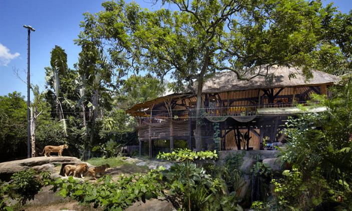 Serunya Berwisata Kebun Binatang Bali Menujubali Commenujubali Zoo Park Gianyar