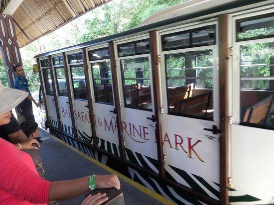 Shuttle Bus Safari Picture Bali Marine Park Gianyar Kebun Binatang