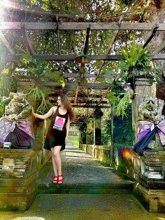 Photo1 Jpg Picture Museum Puri Lukisan Ubud Tripadvisor Kab Gianyar